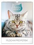 Kočky 2019, nástěnný kalendář, prodloužená záda
