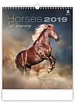 Horses Dreaming 2019, nástěnný kalendář, prodloužená záda