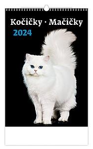 Kočičky 2021, nástěnný kalendář, prodloužená záda