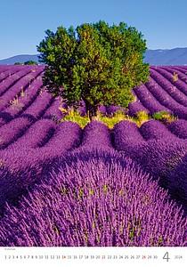 Provence 2022, nástěnný kalendář, prodloužená záda
