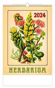 Summer Dreams 2020, nástěnný kalendář, prodloužená záda
