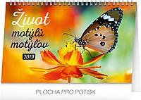Život motýlů 2019, stolní kalendář