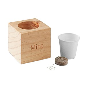 Dřevěný truhlík na bylinky - semínka máty