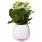 Venkovní Bluetooth® reproduktor v květináči Flower Pot